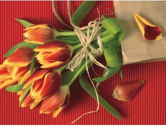 Как, кому и когда дарить букет тюльпанов?