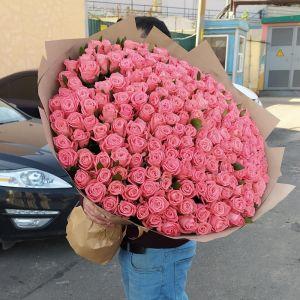Букет из 201 розы Анна Кариния