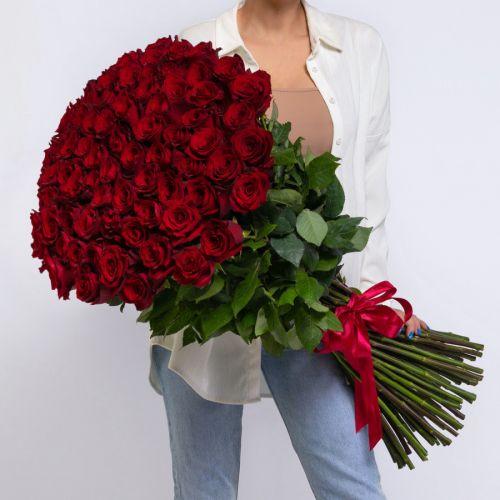 Букет из 75 красных роз 100 см