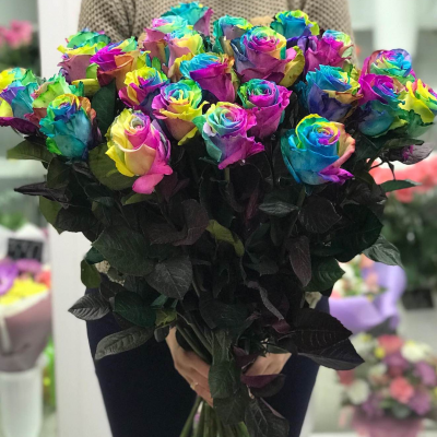 Роза Радужная Ecuador