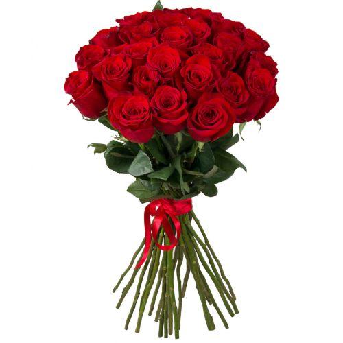 """Красная роза """"Гран При"""" оптом 70 см"""