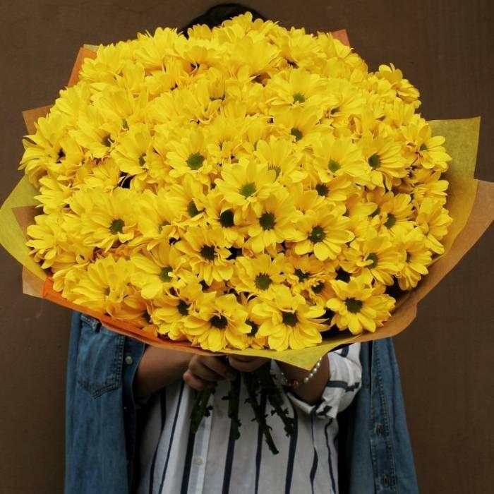 Хризантема желтая оптом