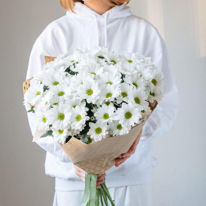 Хризантема белая оптом
