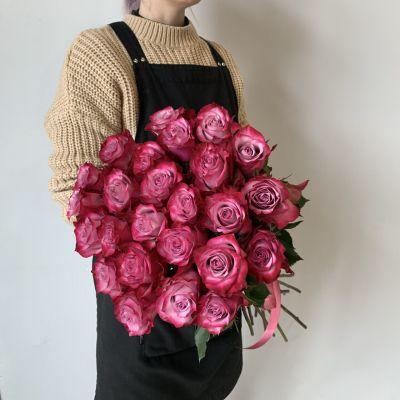 """Роза """"Принц"""""""