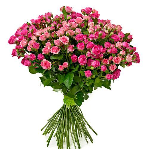 """Розовая кустовая роза """"Лавли Лидия"""""""