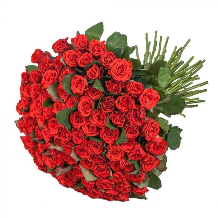 """Красная роза """"Эль Торо"""" оптом"""
