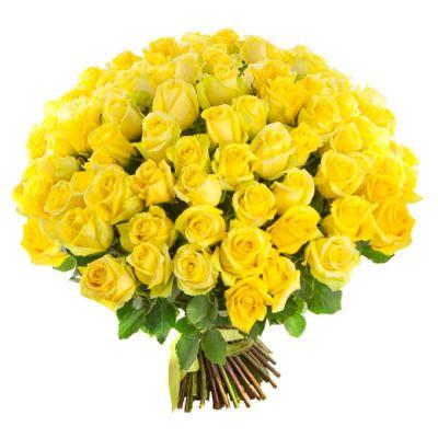 "Желтая роза ""Пенни Лейн"""