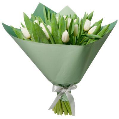 21 белый тюльпан