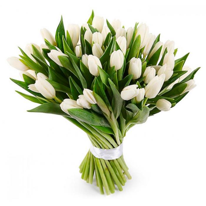 Букет из белых тюльпанов шт